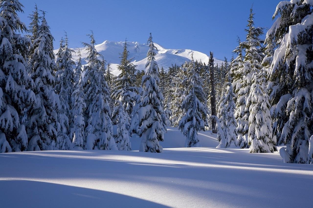 snow 1480921 1280